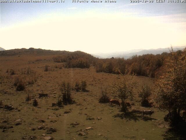 webcam rifugio monte aiona n. 47559